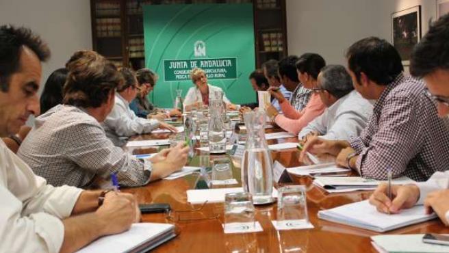 Reunión de Agricultura con Cabrandalucía.