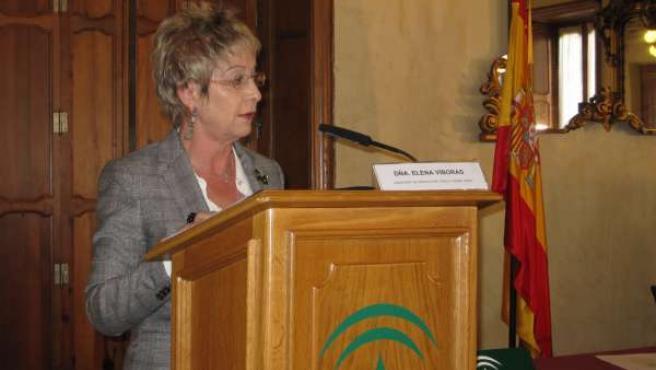 Víboras, en su intervención en Almería