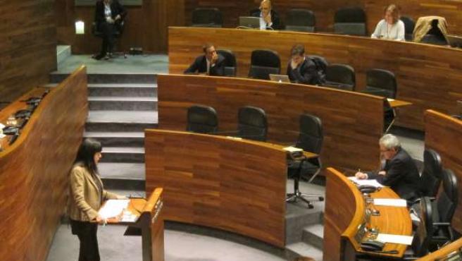 Susana López Ares en la Junta General