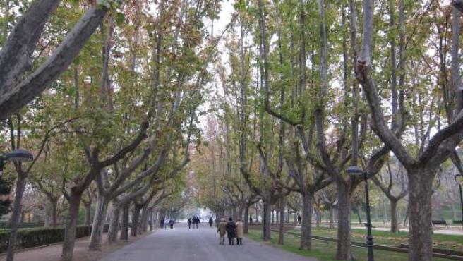 Avenida De Los Bearneses En El Parque Grande De Zaragoza