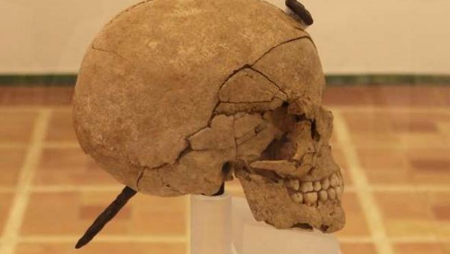 Cráneo enclavado de Ullastret