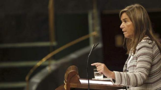 La ministra Ana Mato, en el Congreso.