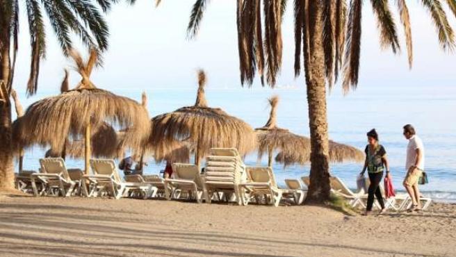 Turismo, hamaca, sombrilla, playa, verano, palmera