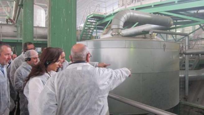 Clemente conoce el proceso de molturación en Acor