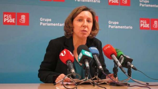 La socialista Carmen Gallego