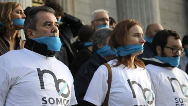 """Los representantes de varias plataformas ciudadanas se han concentrado a las puertas del Congreso para protestar por la ley """"mordaza""""."""