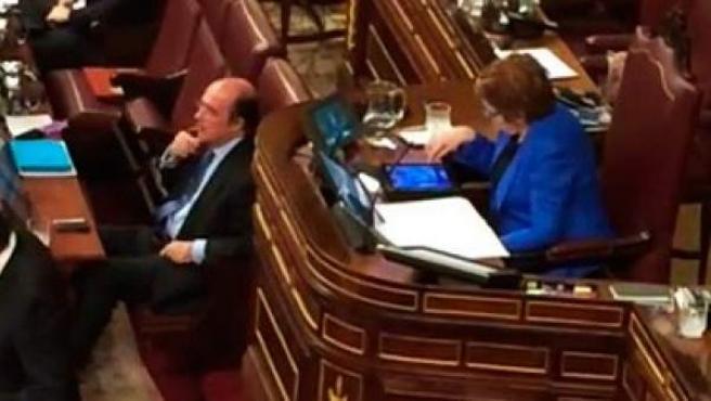 """Celia Villalobos fue acusada de jugar al """"Candy Crush"""" en su tablet en plena sesión del Congreso."""
