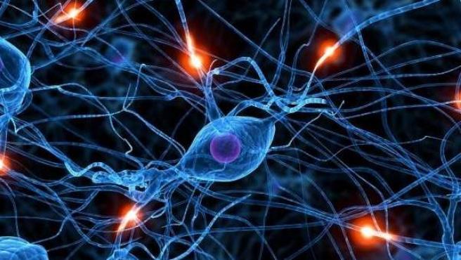 Representación de la actividad de nuestro cerebro y neuronas.