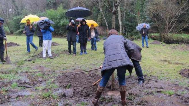 Ffamilias plantan árboles en recuerdo de los fallecidos en el Alvia
