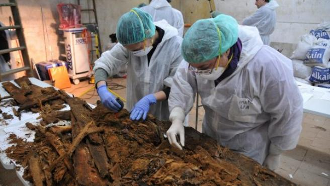 Arqueólogos y antropólogos analizan los restos hallados en la cripta de la iglesia de San Ildefonso, en el convento de las Trinitarias, en busca de Cervantes.