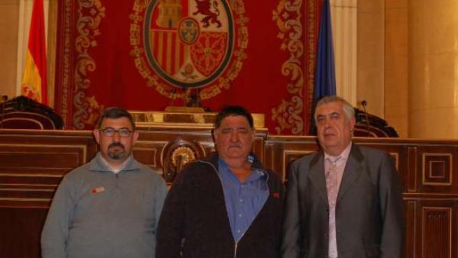 Arrufat (PSOE) en el Senado