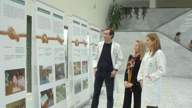 Álvarez (dcha.), Guisado y Cárdenas visitan la muestra