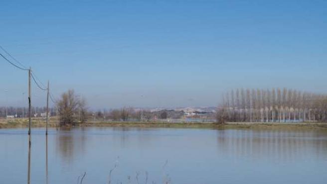 Crecida del Ebro a su paso por Alagón (Zaragoza)