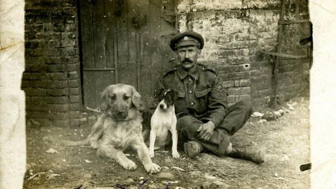 Oficial británico de rango superior de la Royal Army Service Corps (RASC) con Hissy y Jack, dos de los perros del cuerpo, en Francia en agosto de 1916