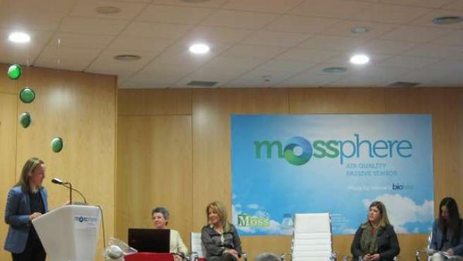 Mossphere