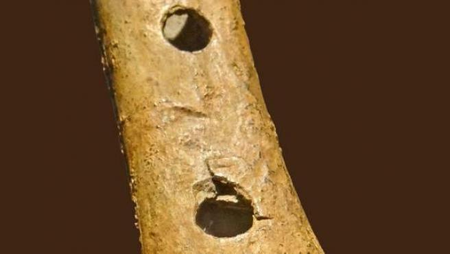 Imagen de un trozo de hueso de oso de la gruta de Divje Babe, en los Alpes, que hasta el momento se creía que era una flauta.
