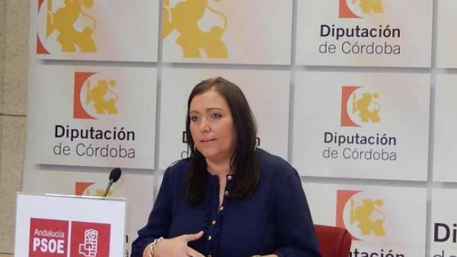 La portavoz adjunta del PSOE en la Diputación, Ana Carrillo