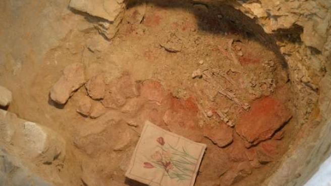 Nuevos descubrimientos en el yacimiento de Pedrera.