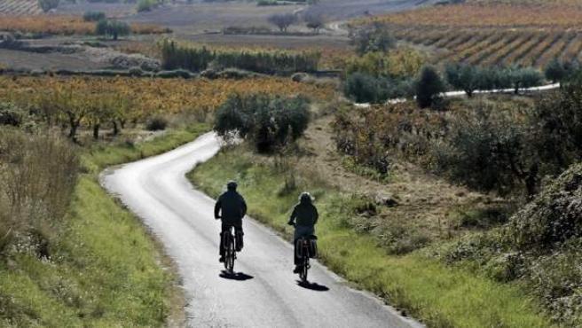 Los viñedos del Penedès, al paso de dos ciclistas.