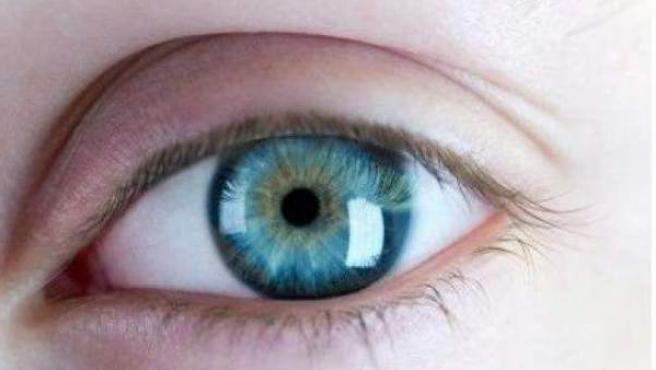 En el sistema visual, las conexiones precisas entre los ojos y el cerebro ayudan a ver las cosas específicas y aseguran que esas imágenes son claras y nítidas.
