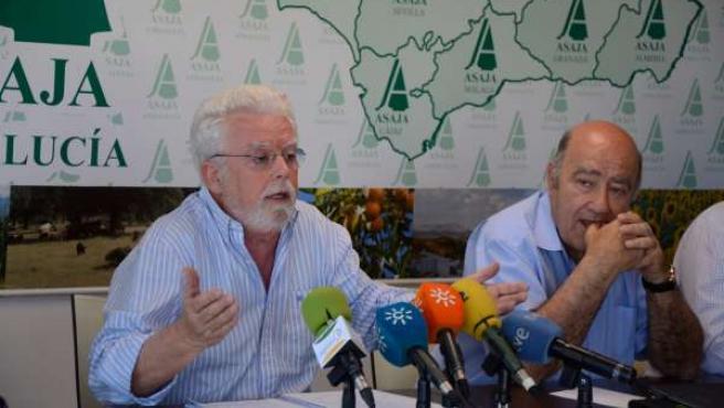 Ricardo Serra, en rueda de prensa.