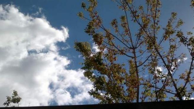 Paisaje con sol y nubes.