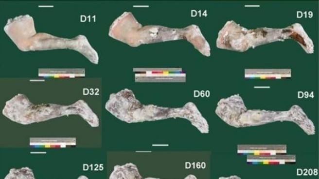 Evolución del proceso de momificación realizado por los científicos griegos.