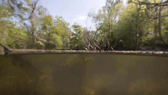 Foto de Isabelle Huyer de un canal de aguas industriales en Nueva Orleans