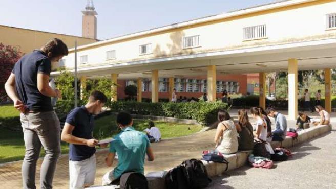 Alumnos estudian para Selectividad en la UPO