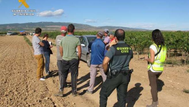 Foto inspección trabajadores de campo