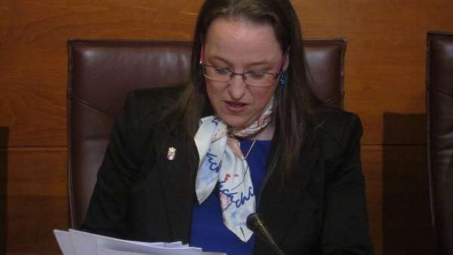 La consejera de Presidencia y Justicia, Leticia Díaz
