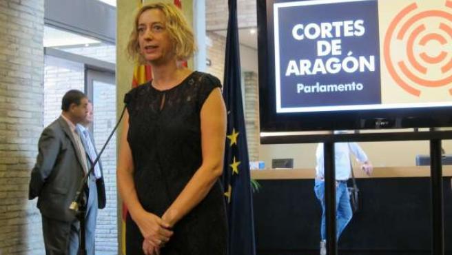 La diputada de IU en las Cortes de Aragón, Patricia Luquin
