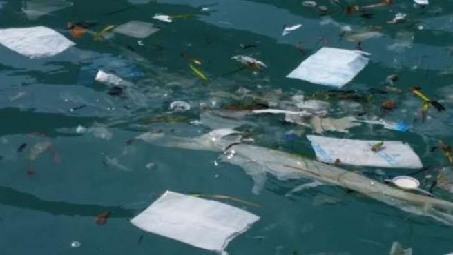 Bolsas de plástico en Cabrera