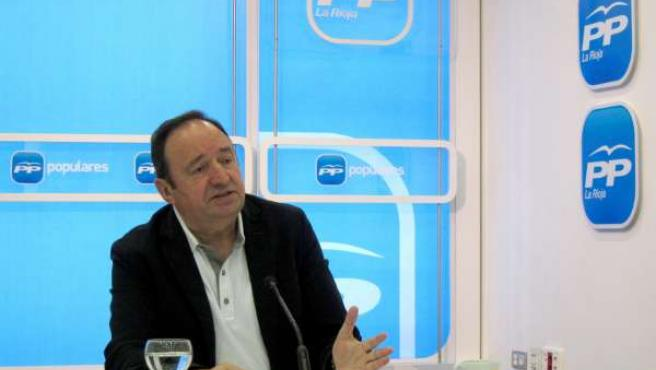 Pedro Sanz, durante su comparecencia ante los medios