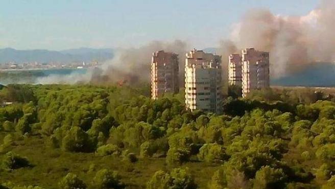 Imagen del incendio de El Saler de este jueves