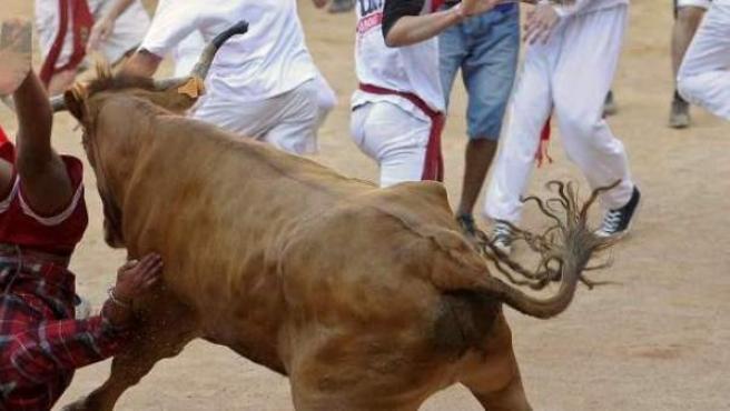 Un joven es volteado por una vaquilla en la plaza de toros de Pamplona.