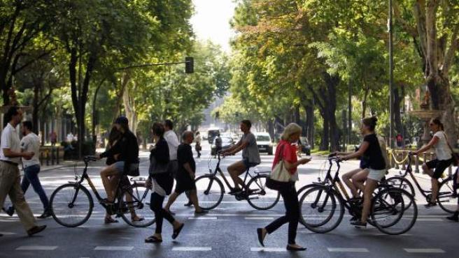 El Paseo del Prado se cerrará al tráfico todos los domingos por la mañana.