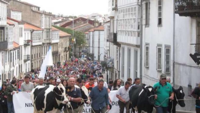 Manifestación de ganaderos en Santiago