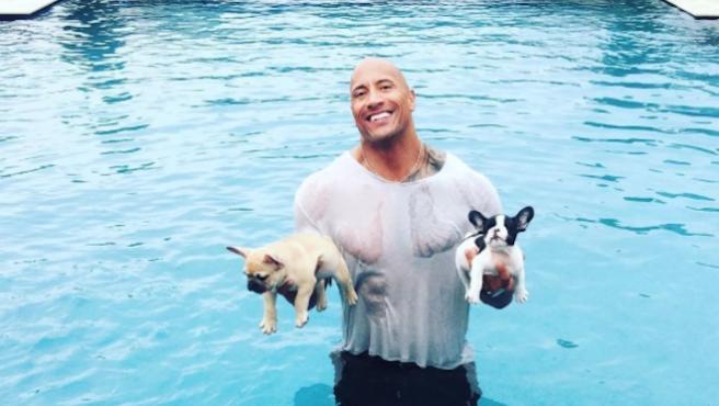 Foto del día: Dwayne Johnson, héroe canino