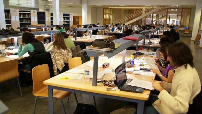 Varios universitarios españoles estudian en la biblioteca.
