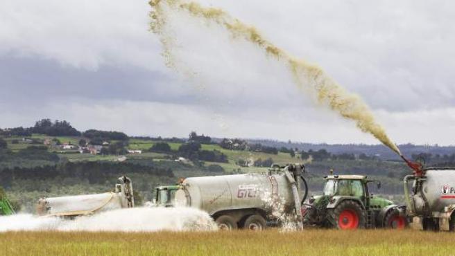 Quince ganaderías de la parroquia de Abellá derraman 130.000 litros de leche para dar visibilidad al problema del sector por el bajo precio del producto.