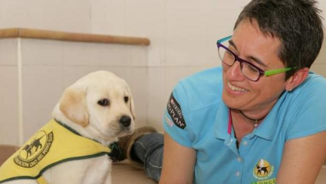 Un cachorro nacido en las instalaciones de la Fundación ONCE, preparándose para convertirse en perro guía.