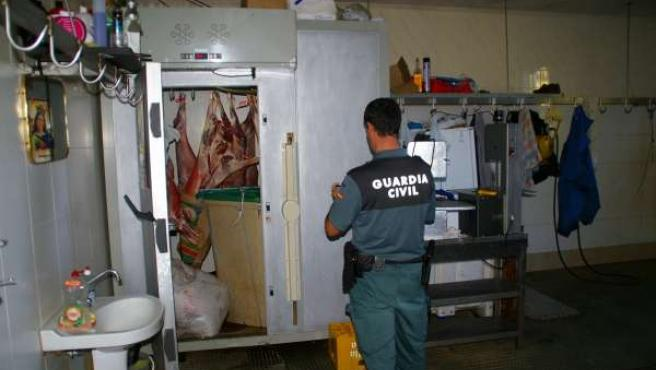 Matadero ilegal localizado en Balsoma