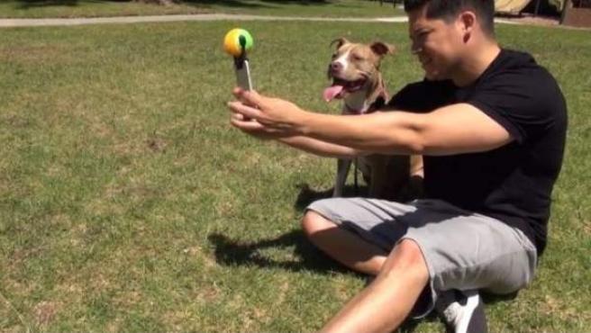 Así funciona el Pooch Selfie, el invento que garantiza que los perros salgan siempre bien en las fotos.