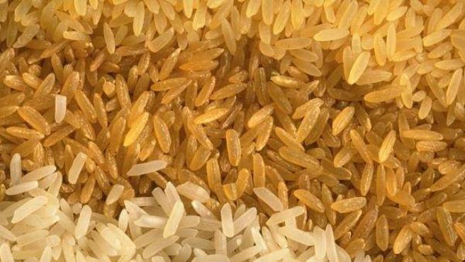 Diferentes variedades de arroz.