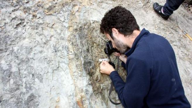 Un paleontólogo fotografía los restos de dinosaurio hallados en el yacimiento de Coll de Nargó (Lleida).