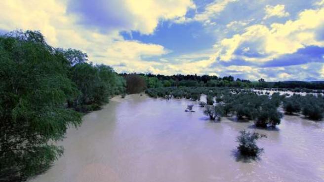 Desbordamiento del río Guadalquivir en 2013 a su paso por Villanueva de la Reina