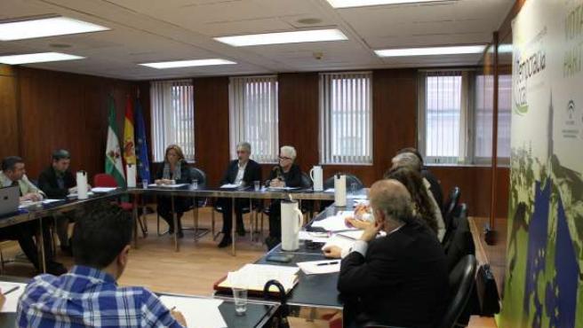 Alonso preside por primera vez el Consejo Andaluz de Consumo