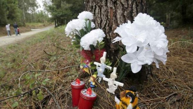 Varios ramos de flores y juguetes en un altar improvisado en la pista forestal donde fue hallada sin vida la niña Asunta Basterra.