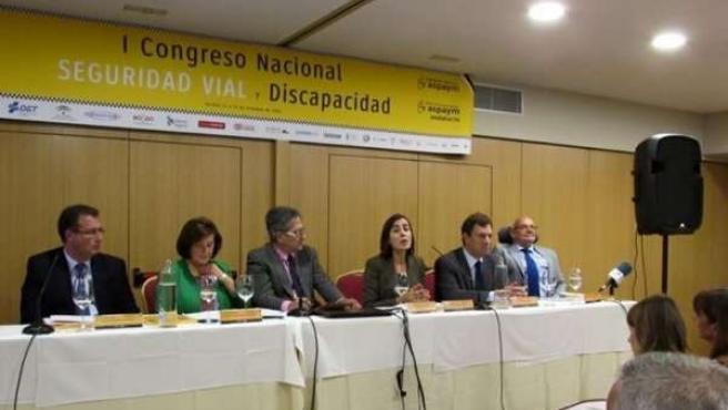 Congreso de Seguridad Vial y Discapacidad